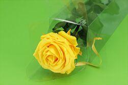 Sk Růže na stonku premium saffron yellow - velkoobchod, dovoz květin, řezané květiny Brno