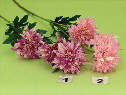 Uk corn flower X3 72cm pink - velkoobchod, dovoz květin, řezané květiny Brno