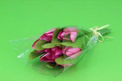 Uk tulipán X7/28cm růžový - velkoobchod, dovoz květin, řezané květiny Brno