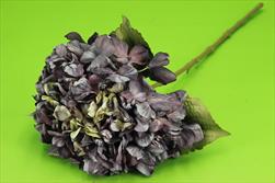 Uk hortenzie 63cm sušený vzhled fialová - velkoobchod, dovoz květin, řezané květiny Brno