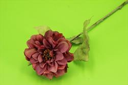 Uk jiřina 43cm sušený vzhled salmon - velkoobchod, dovoz květin, řezané květiny Brno