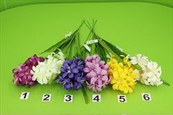 Uk hyacint 50cm - velkoobchod, dovoz květin, řezané květiny Brno