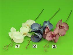 Uk Orchidea 56cm - velkoobchod, dovoz květin, řezané květiny Brno