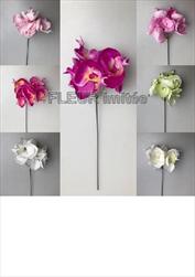 Uk Orchidea zápich 30cm - velkoobchod, dovoz květin, řezané květiny Brno