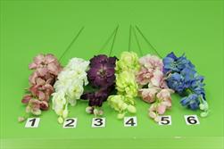 UK delphinium zápich  - velkoobchod, dovoz květin, řezané květiny Brno