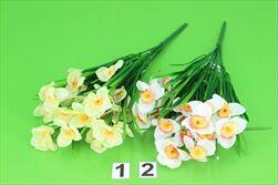 Uk narcis  - velkoobchod, dovoz květin, řezané květiny Brno