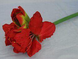 Amarylis umělý V73cm červená - velkoobchod, dovoz květin, řezané květiny Brno
