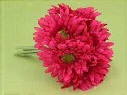 Gerbera svazek S/8 tm.růžová - velkoobchod, dovoz květin, řezané květiny Brno