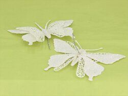 Motýl sponka pvc S/2 bílá - velkoobchod, dovoz květin, řezané květiny Brno