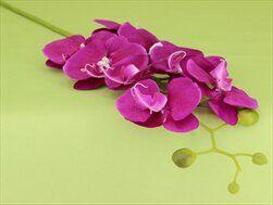 Orchidej umělá 102cm fialová - velkoobchod, dovoz květin, řezané květiny Brno