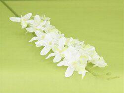 Orchidej umělá bílá - velkoobchod, dovoz květin, řezané květiny Brno