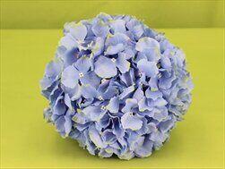 Hortenzie koule pr.20cm modrá - velkoobchod, dovoz květin, řezané květiny Brno