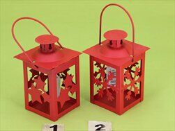Lucerna kov červená - velkoobchod, dovoz květin, řezané květiny Brno