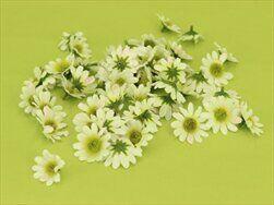 Mini kopretina textil 60ks/2,5cm bílá - velkoobchod, dovoz květin, řezané květiny Brno