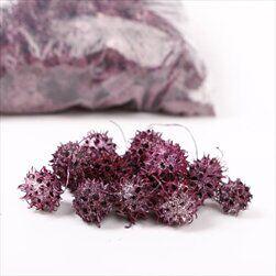 SU Ambroň Loose Frosted Erica 1kg - velkoobchod, dovoz květin, řezané květiny Brno