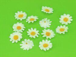 Kopretina přízdoba textil 12ks/pr.3,2cm - velkoobchod, dovoz květin, řezané květiny Brno