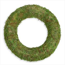 Kruh mech pr.40cm zelený - velkoobchod, dovoz květin, řezané květiny Brno