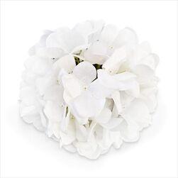 Hortenzie květ textil pr.18cm bílá - velkoobchod, dovoz květin, řezané květiny Brno