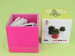 Plast obal Cubi 9x9x9 růžový - velkoobchod, dovoz květin, řezané květiny Brno