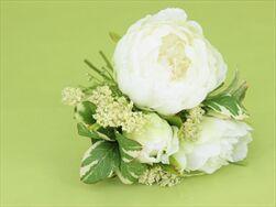 Uk Pivoňka kytice 20cm krémová - velkoobchod, dovoz květin, řezané květiny Brno