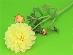 Uk Dahlia 68cm žlutá - velkoobchod, dovoz květin, řezané květiny Brno