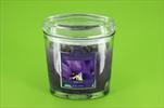 Svíčka ovál 226g Wild Iris - velkoobchod, dovoz květin, řezané květiny Brno