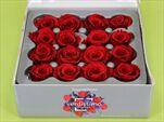 Sk Hlavy růže princess red 16pcs - velkoobchod, dovoz květin, řezané květiny Brno