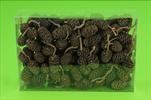 Su šišky olše natur 0,22kg - velkoobchod, dovoz květin, řezané květiny Brno