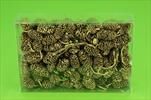 Su šišky olše 0,25kg zlaté - velkoobchod, dovoz květin, řezané květiny Brno