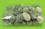 Su šišky mix natur bělené 0,23kg - velkoobchod, dovoz květin, řezané květiny Brno