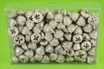 Su eukalyptus plod 0,5kg stříbrno-růžové - velkoobchod, dovoz květin, řezané květiny Brno