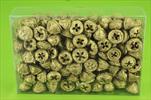 Su eukalyptus plod 0,5kg zlaté - velkoobchod, dovoz květin, řezané květiny Brno