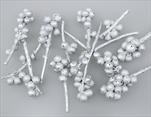SU Větev Žaludová stříbrná 0,6kg - velkoobchod, dovoz květin, řezané květiny Brno