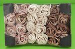 Růže pěna 5cm/24ks Vintage - velkoobchod, dovoz květin, řezané květiny Brno