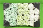 Růže pěna 5cm/24ks Verte - velkoobchod, dovoz květin, řezané květiny Brno