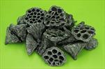 Su lotos střední 20ks černo-stříbrný - velkoobchod, dovoz květin, řezané květiny Brno