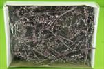 Su canella brombeer-stříbro 10ks - velkoobchod, dovoz květin, řezané květiny Brno