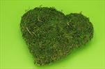 Srdce mech 25cm - velkoobchod, dovoz květin, řezané květiny Brno