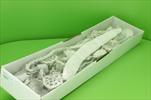 Su sušina mix 40ks bílá - velkoobchod, dovoz květin, řezané květiny Brno