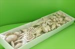 Su sušina mix 40ks růžová - velkoobchod, dovoz květin, řezané květiny Brno