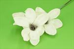 Uk Magnolia glitr 45cm krémová - velkoobchod, dovoz květin, řezané květiny Brno