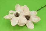 Uk Magnolia glitr 45cm světle růžová - velkoobchod, dovoz květin, řezané květiny Brno