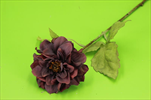 Uk jiřina 43cm sušený vzhled burgundy - velkoobchod, dovoz květin, řezané květiny Brno