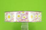 ST 25mm/20m Margit  - velkoobchod, dovoz květin, řezané květiny Brno