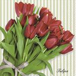 Do Ubrousky s tulipány - velkoobchod, dovoz květin, řezané květiny Brno