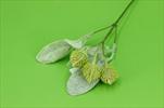 UK větev šiška 30cm - velkoobchod, dovoz květin, řezané květiny Brno