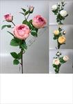 Uk Větev růže 69cm - velkoobchod, dovoz květin, řezané květiny Brno