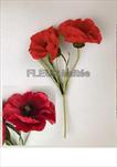 Uk mák X2/40cm - velkoobchod, dovoz květin, řezané květiny Brno