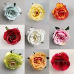 Uk květ růže 6cm - velkoobchod, dovoz květin, řezané květiny Brno