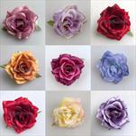 UK květ růže scarlett 6cm - velkoobchod, dovoz květin, řezané květiny Brno